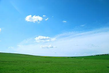 A large green pasture with clear blue skies